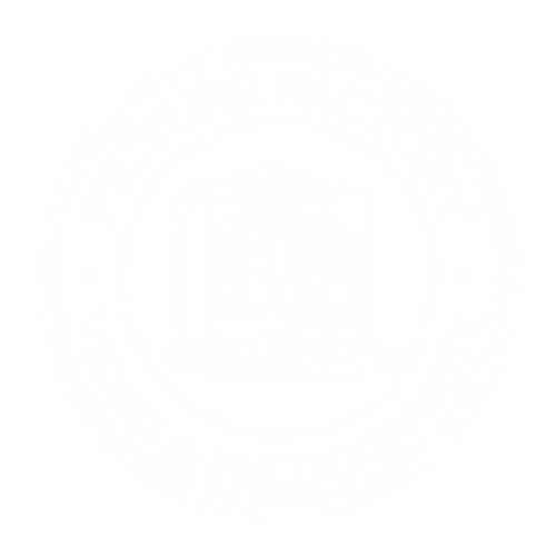 logo picture factory - videos - weiß - transparent